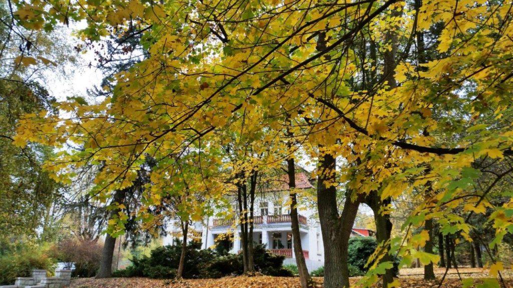 podzim v Jevanech