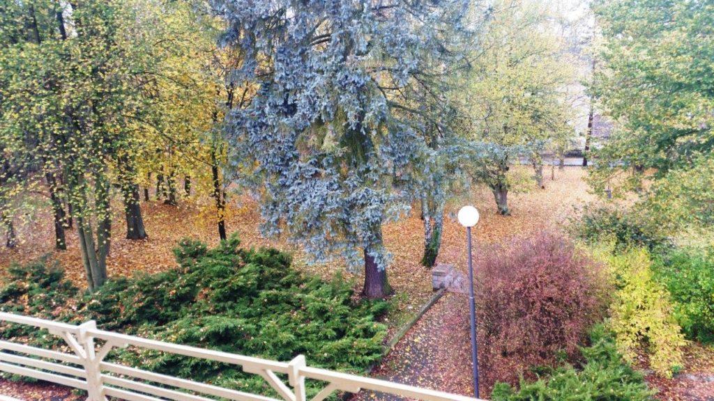 podzim v Jevanech.